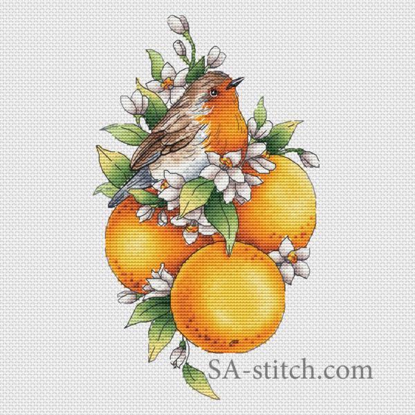Птичка_с_мандаринами